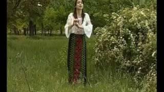 Играй, гармонь любимая! Мы в Молдавии с тобой  1 часть