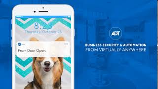 ADT Small Business Security - Motion Detectors, Intrusion Alerts & More