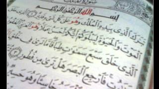 سورة الملك - بصوت عامر الكاظمي