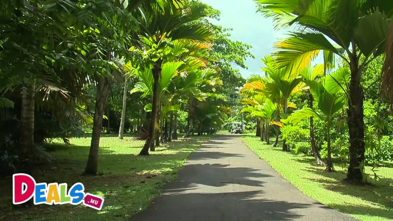 pamplemousse botanical garden jardin de pamplemousse mauritius ile maurice youtube. Black Bedroom Furniture Sets. Home Design Ideas