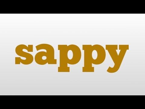 sappy meaning and pronunciation