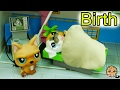 Baby Puppy At Hospital - LPS Mommies Series Littlest Pet Shop Part 72 Cookieswirlc Video
