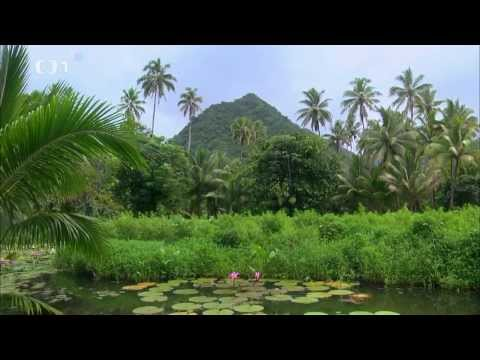 Na cestě po Tahiti