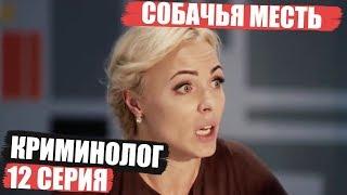 Криминолог - 12 серия - Собачья месть | Детектив 2018