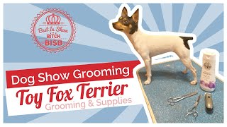 Dog Show Grooming: How To Groom a Toy Fox Terrier