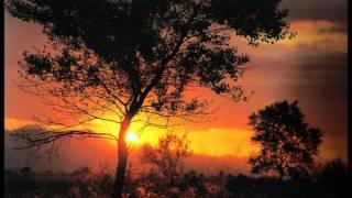 Franz Schubert - Notturno