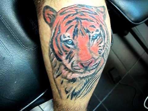 Tatuaje Tigre Sobre Cicatriz Pierna Quemada Tatuajes Osorno