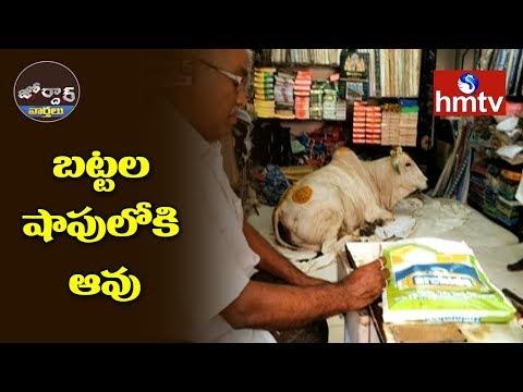 బట్టల షాపులోకి ఆవు  Jordar News  hmtv Telugu News