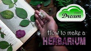How To Make A Herbarium/ Как сделать гербарий - DREAM Studio