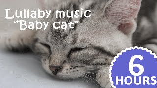 Best CAT LULLABY ♫ lullaby music for cats ♫ 6 hours