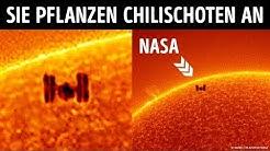 Ein einzigartiges Bild einer Weltraumstation die vor der Sonne fliegt
