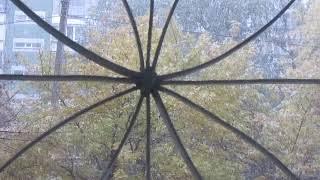 Из окна (погода)