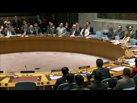 Security Council Votes on Draft Resolution S/2018/175 on Syria (10 April 2018)