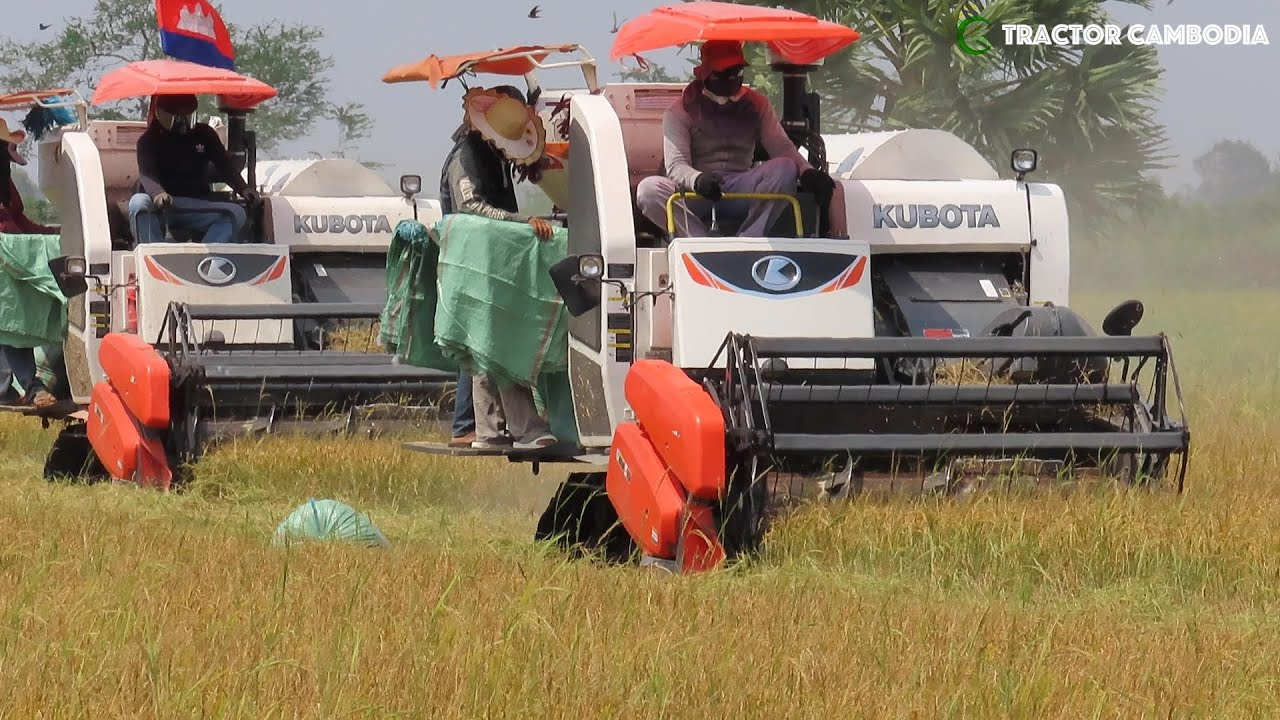 Download Awesome Rice Harvester Working Skills Machine | Technology Agriculture Crop Machine Equipment