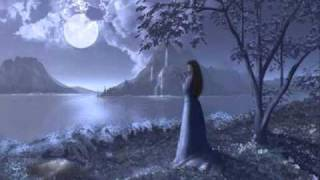 celine dion - my heart will go on (en español)