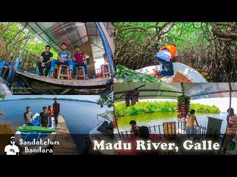 Madu River Boat Safari and Sea Turtles at Ambalangoda, Galle |  Travel Sri Lanka