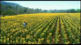 Giấc mộng sau rèm ( Dreams Link OST)