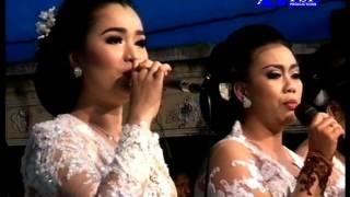 Download Mp3 Sambel Kemangi Adilaras Live Klampok 2017