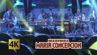 Marimba Maria Concepcion - Que Bello 4K