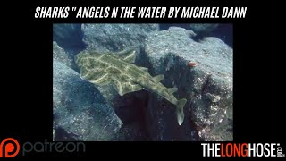 """ANGELS IN THE WATER"" FINAL CUT"