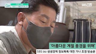 '아름다운 계절 풍경을 위해' 대전가나조경 SBS Bi…