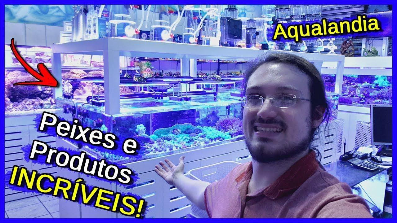 Visitei uma Loja de AQUARISMO! - Aqualandia
