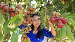 Cooking Rose apple fruit soup with sea food in my homeland - Polin Lifestyle