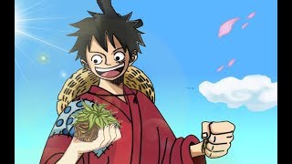 One Piece - Luffy's New Devil Fruit Revealed