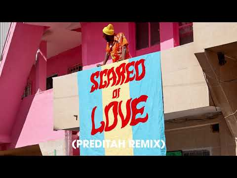 Rudimental - Scared Of Love feat. Ray BLK & Stefflon Don [Preditah Remix]