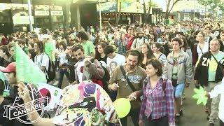 Wide World of Cannabis: Uruguay Part III