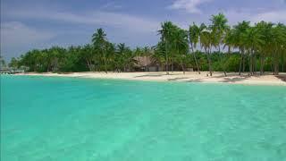 Video [10 Hours] Maldives Sea, Beach and Palm Trees - Video & Audio [1080HD] SlowTV download MP3, 3GP, MP4, WEBM, AVI, FLV Juni 2018