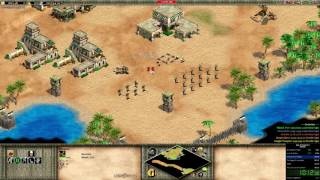 Age of Empires II - Saladin full-campaign speedrun in 30:17 [Hard difficulty]