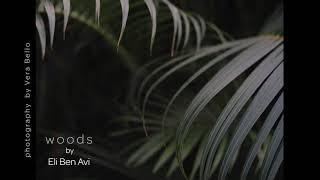WOODS | Eli Ben Avi | Music for Ads