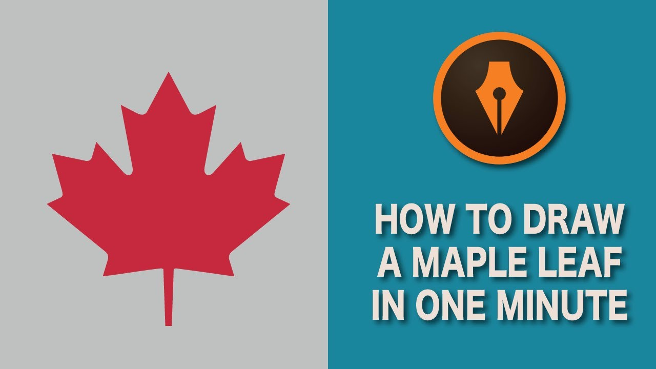 Draw a Maple Leaf in Illustrator| #illustratortutorials ...