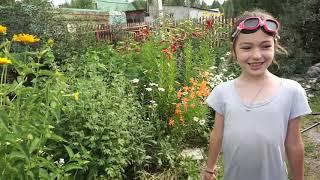 Мои развлечения  в саду