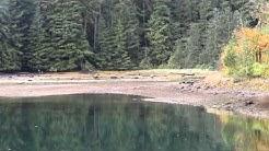 BC Coast Fanny Bay