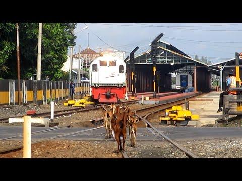 Perlintasan KA Stasiun Balapan