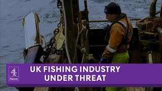 The immigration crackdown threatening UK's fishing industry