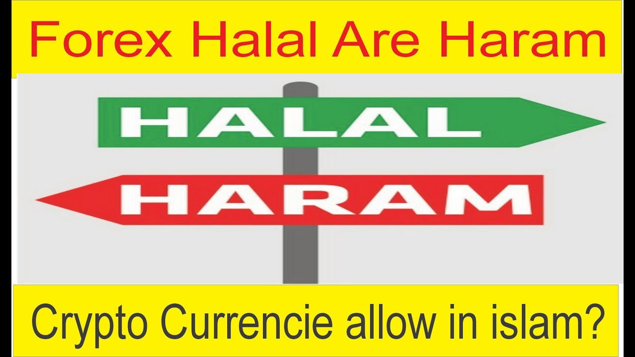 Islamic fatwa on forex trading