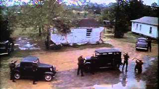 Thieves like us trailer