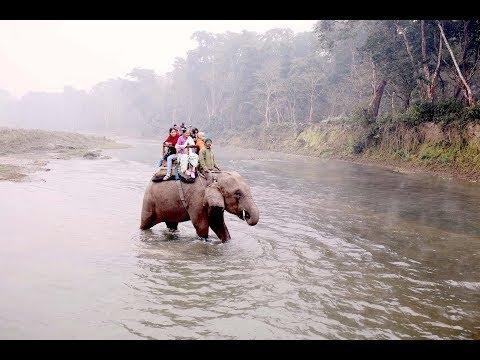 Travel Diary: Nepal 2016 - Lumbini - Chitwan - Kathmandu