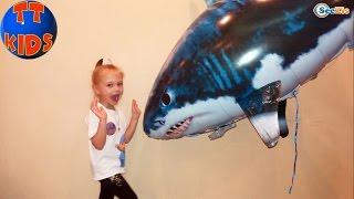 акула видео