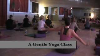 Daytona Yoga & Wellness Center Promo Video April 2011