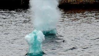 【マニアック】水中キャノンをハイスピードモード撮影(ヴィラワ2017 9月16日 TDS) thumbnail