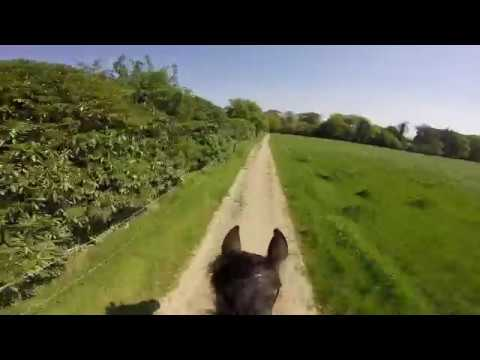 GOPRO CAMERA ON A RIDER AROUND AN EXHILARATING CROSS COUNTRY COURSE IRELAND