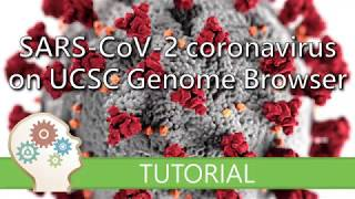 VISUALISE THE SARS-CoV-2 CORONAVIRUS GENOME - UCSC Genome Browser Tutorial series