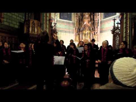 Frauenchor Cäcilia Inningen - Macht hoch die Tür