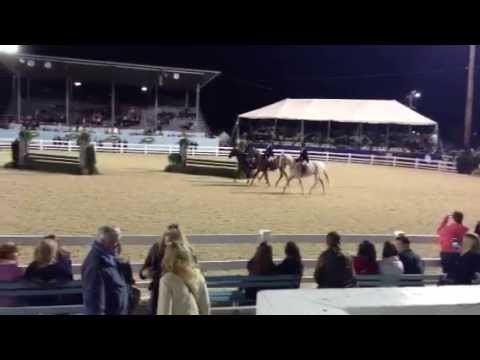 Devon Horse Show Hunt Teams 2013
