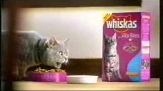 funny whiskas commercial