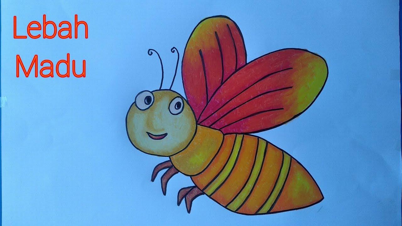 Cara Menggambar Lebah Menggambar Lebah Madu